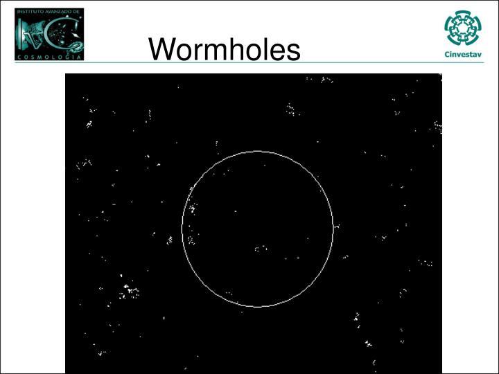 Wormholes