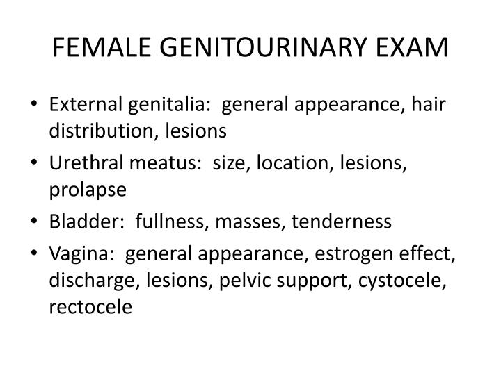 FEMALE GENITOURINARY EXAM