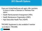 2013 benefit options