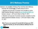 2013 wellness promise