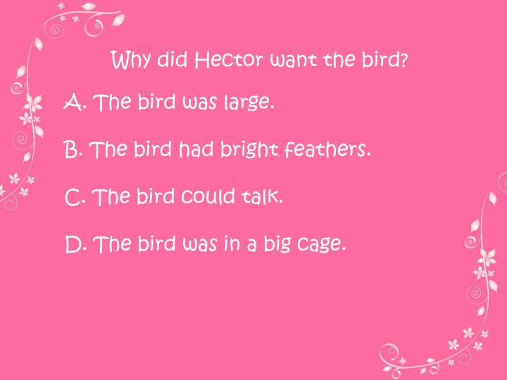 Why did Hector want the bird?