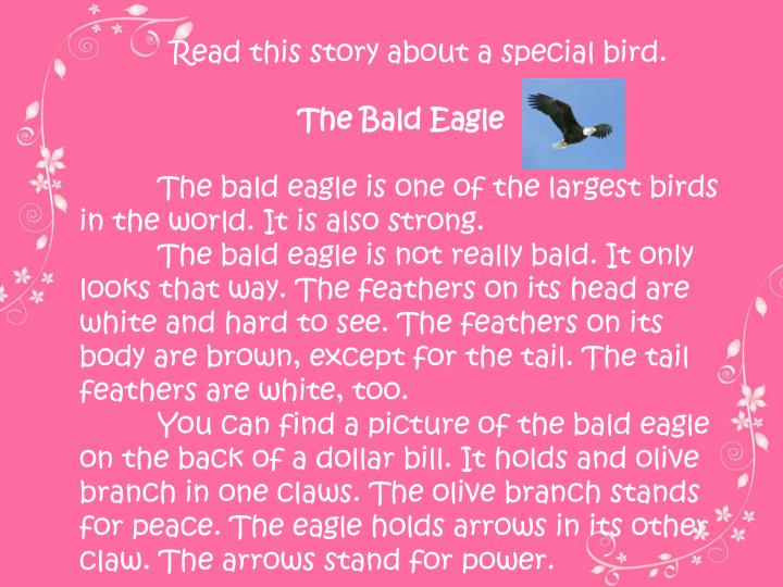 Read this story about a special bird.