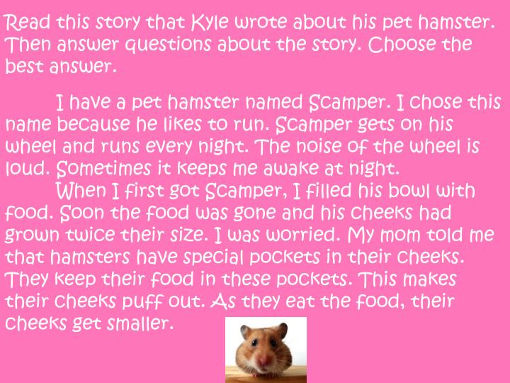 Read this story that Kyle wrote about his pet hamster. Then answer questions about the story. Choose the best
