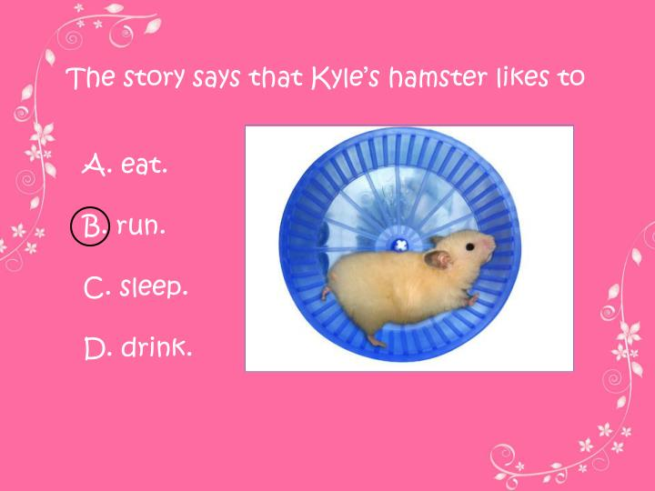 The story says that Kyle's hamster likes to