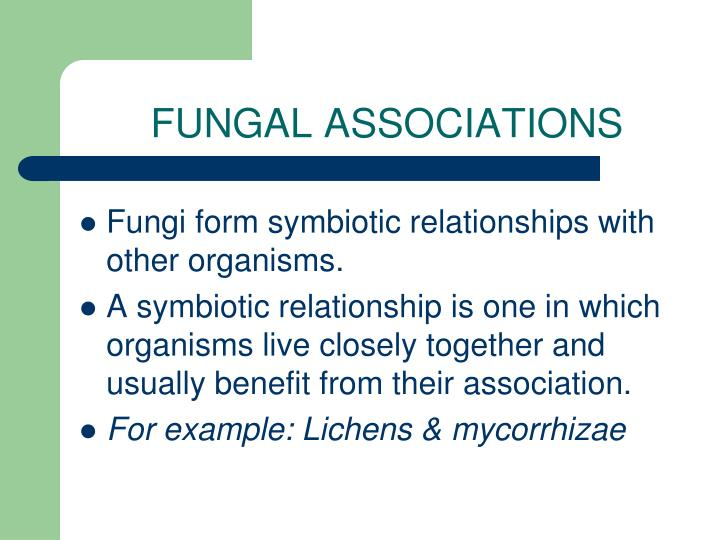 FUNGAL ASSOCIATIONS