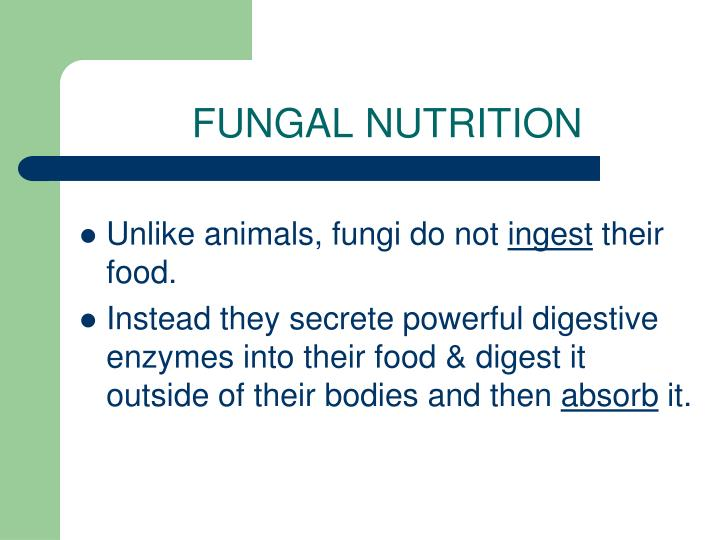 FUNGAL NUTRITION