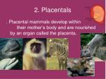 2 placentals