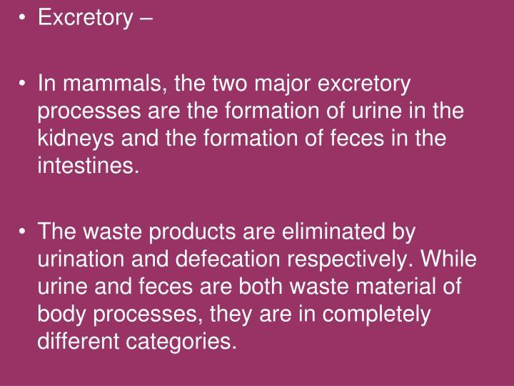 Excretory –