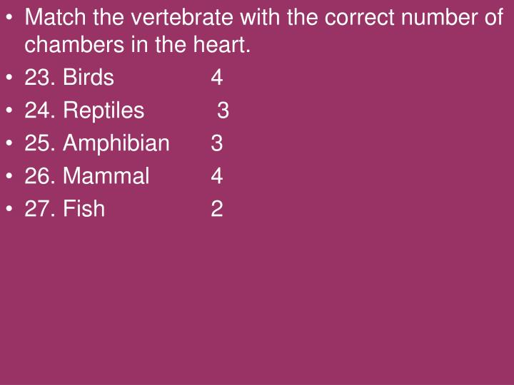 Match the vertebrate with the correct number of chambers in the heart.