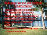 suburban sprawl and political fragmentation