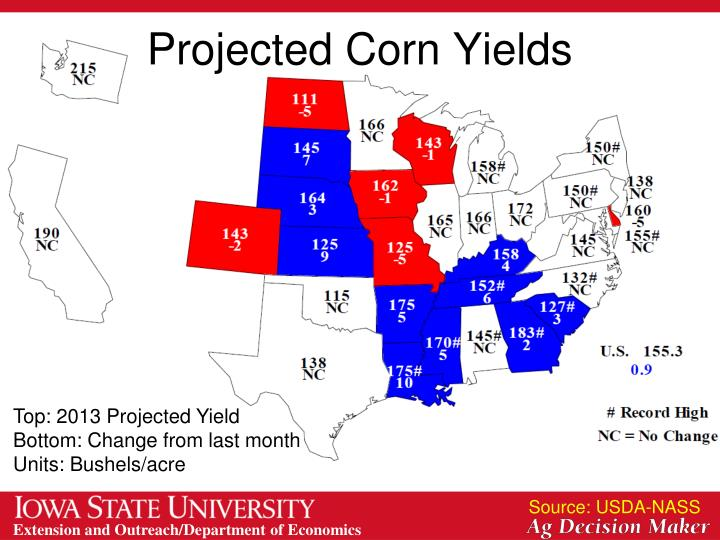 Projected Corn Yields