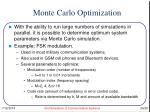 monte carlo optimization