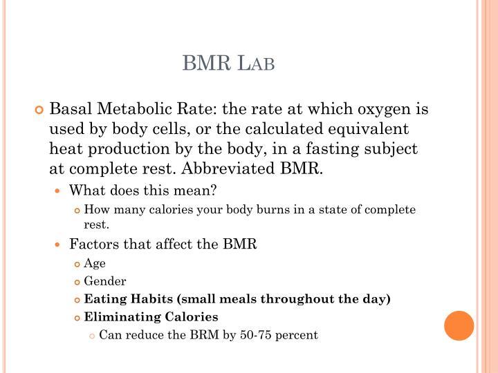 BMR Lab