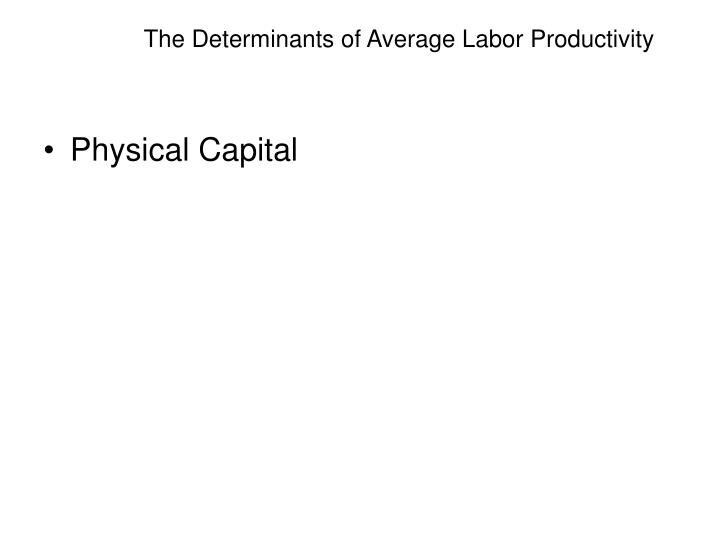 The Determinants of Average Labor Productivity