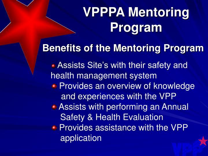 VPPPA Mentoring Program