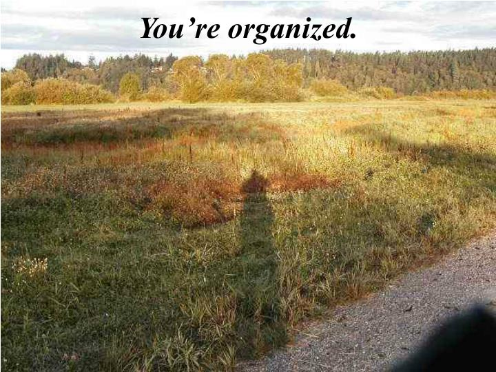 You're organized.
