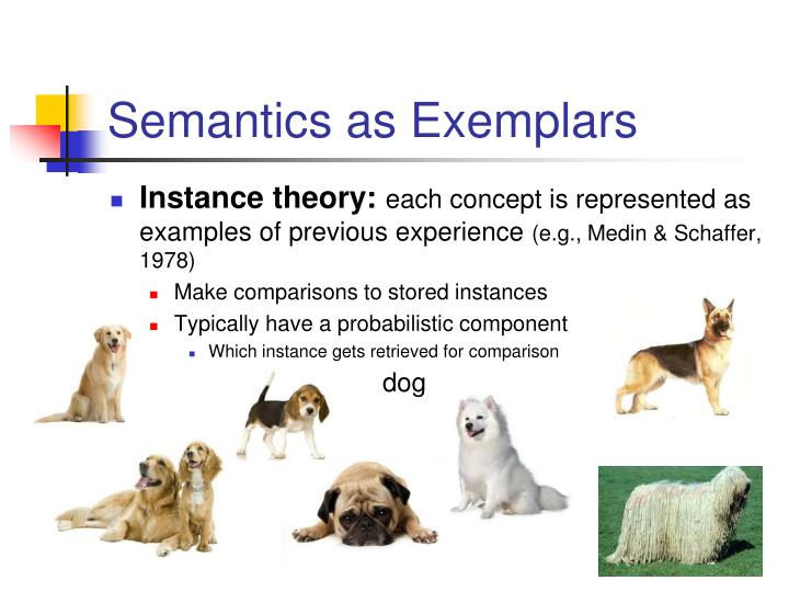 Semantics as Exemplars