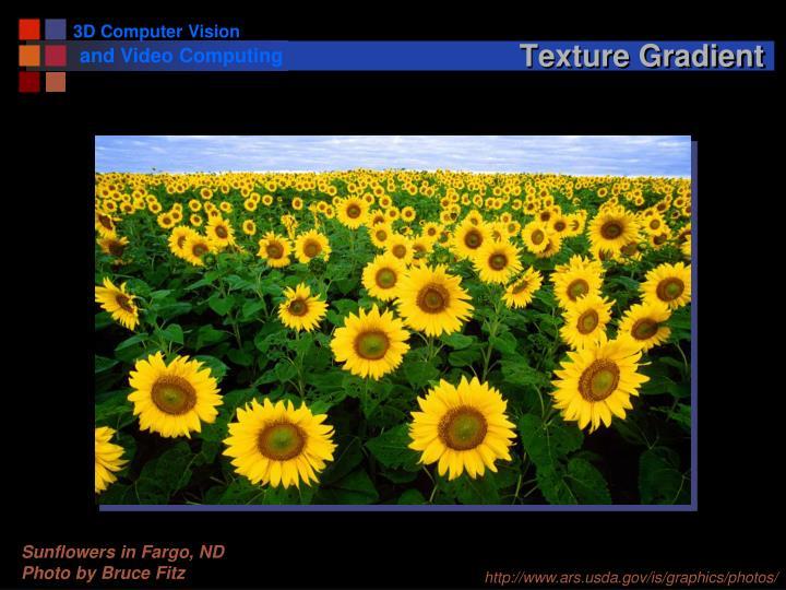 Texture Gradient