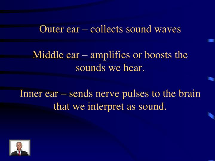 Outer ear – collects sound waves
