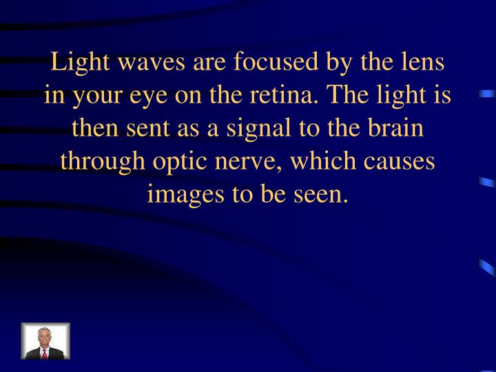 Light waves are focused by the lens in your eye on the retina. The light is then sent as a signal to the brain through optic nerve, which causes images to be seen.