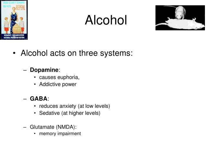 Gabapentina 300 mg in english