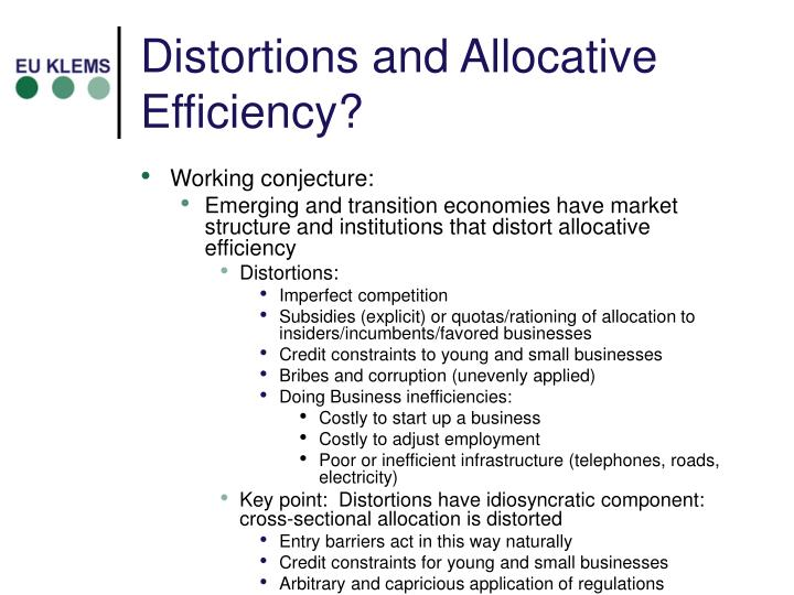 Distortions and Allocative Efficiency?