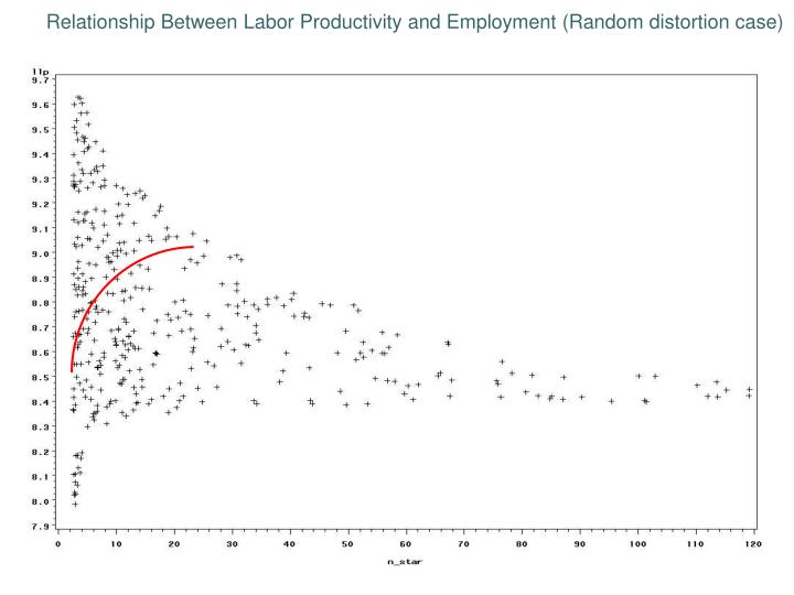 Relationship Between Labor Productivity and Employment (Random distortion case)