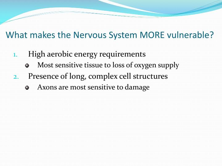 What makes the Nervous System MORE vulnerable?