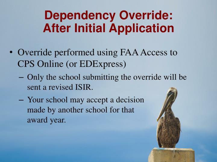 Dependency Override: