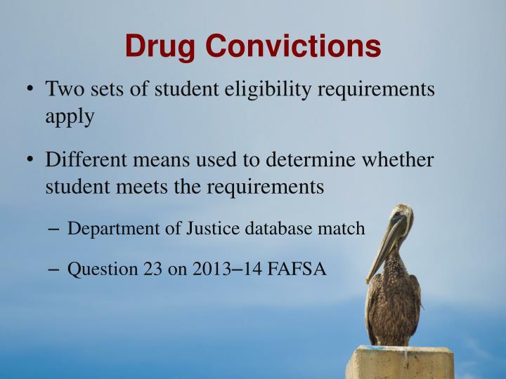 Drug Convictions