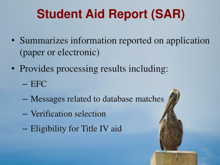 Student Aid Report (SAR)