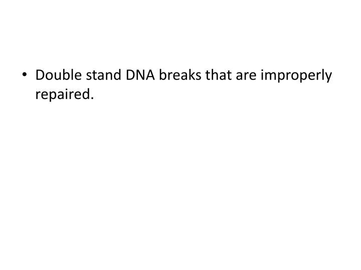Double stand DNA breaks that are improperly repaired.
