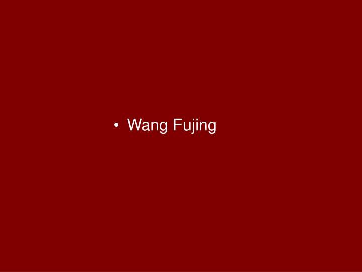Wang Fujing