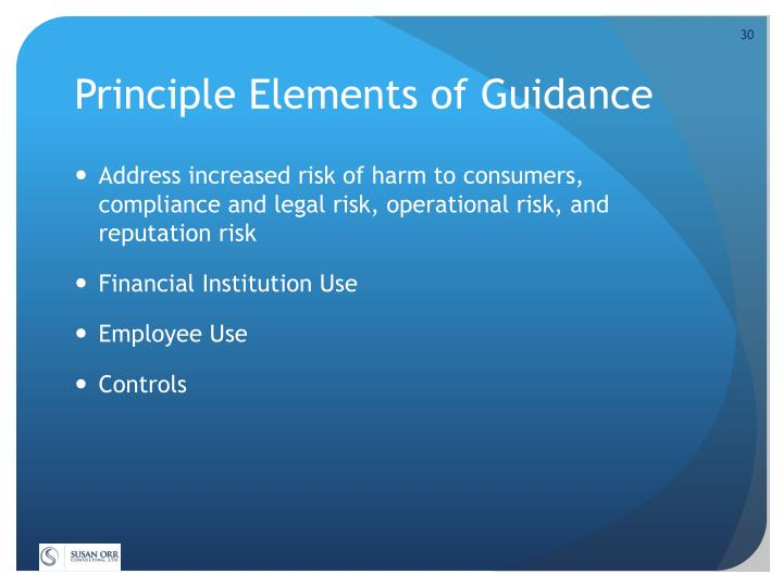 Principle Elements of Guidance