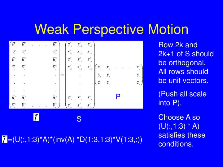 Weak Perspective Motion