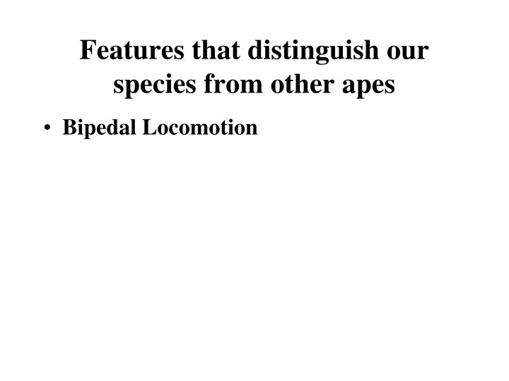 Features that distinguish our species from other apes