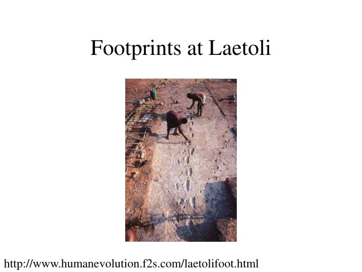 Footprints at Laetoli
