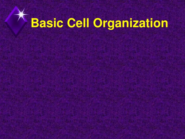 Basic Cell Organization