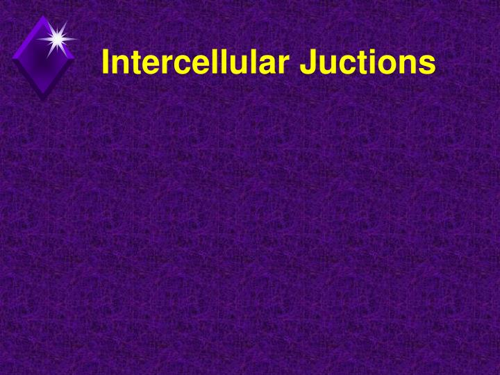 Intercellular Juctions
