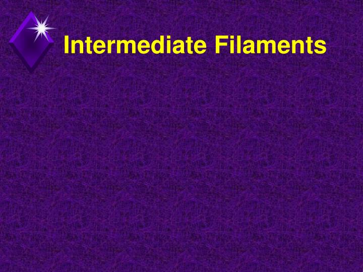Intermediate Filaments