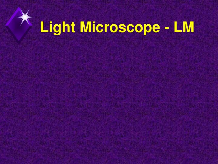 Light Microscope - LM