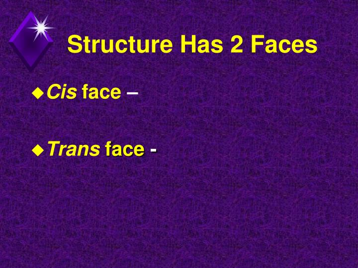 Structure Has 2 Faces