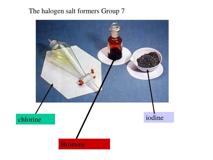 The halogen salt formers Group 7