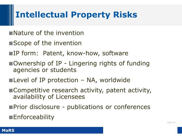 Intellectual Property Risks