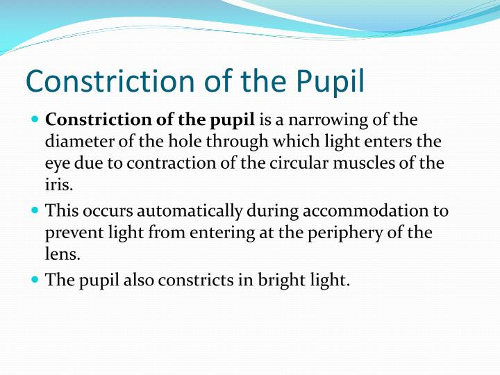 Constriction of the Pupil