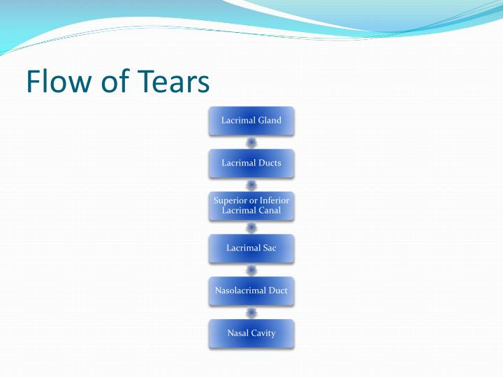 Flow of Tears