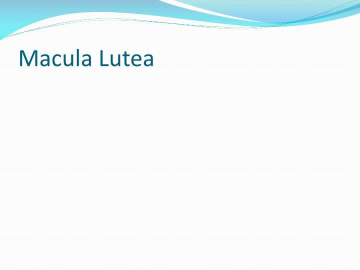 Macula Lutea