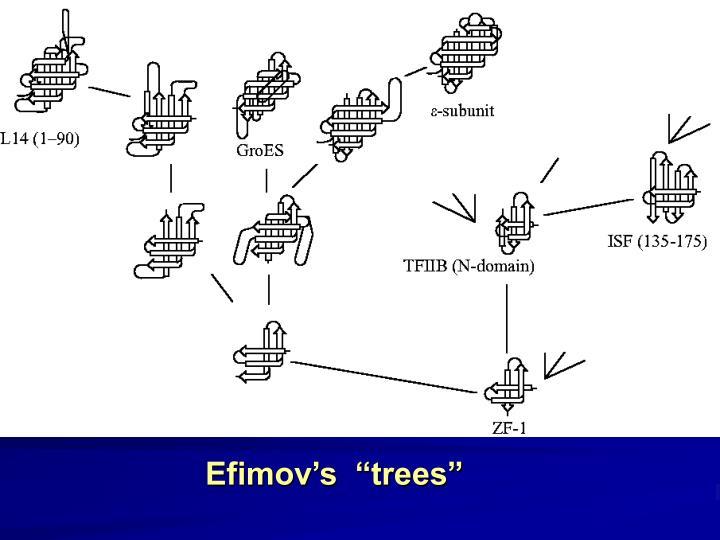 "Efimov's  ""trees"""