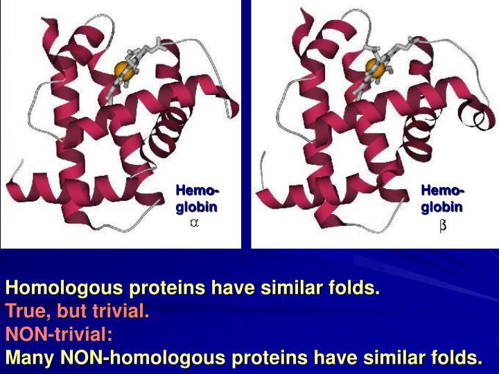 Hemo-