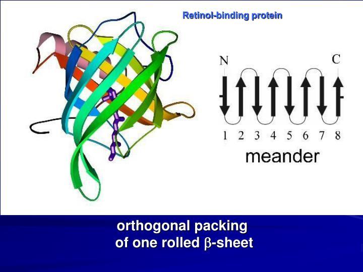 Retinol-binding protein